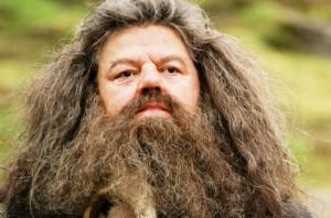 hagrid beard movie